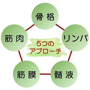 滋賀県守山市のフェイシャルエステ 眠るほど優しい圧で骨格・筋肉・リンパ・筋膜・髄液の5つにアプローチする技術により小顔効果が長持ちします